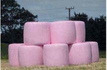 quaderballen, pink robbin, trioplast
