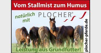 Plocher Grundfutter Pferde