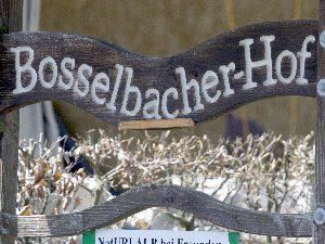 bosselbacher hof, nordeifel, pensionspferdehaltung