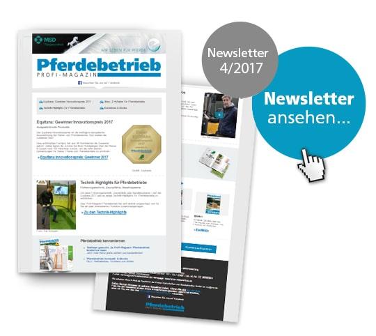 Newsletter | Newsletter Pferdebetrieb