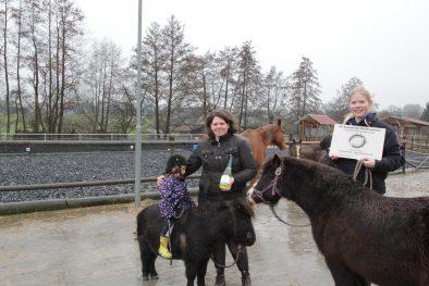 """Im Rahmen des Wettbewerbs """"Gesunde Haltung – Gesunde Pferde"""" wurde der Franzehof prämiert."""