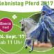Uelzener Erlebnistag Pferd 2017