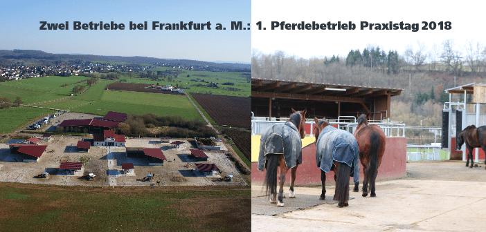 Teilnehmerplatz sichern: Pferdebetrieb Praxistag April 2018