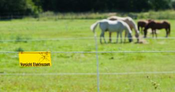 Noch mehr Schilder auf Pferdebetriebe?