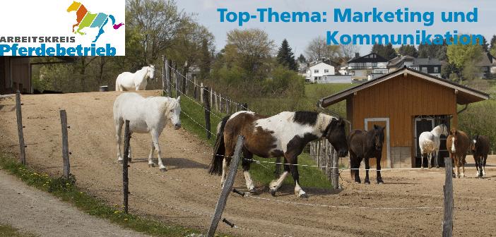 Arbeitskreis Pferdebetrieb: Praxistag bei Aachen
