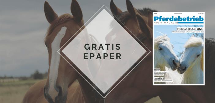 Equines coronavirus pferd