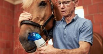 Inhalationstherapie für Equines Asthma - Equihaler