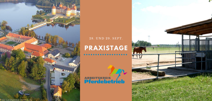 Praxistage Dresden