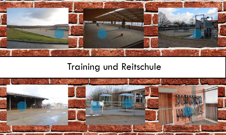 Training und Reitschule