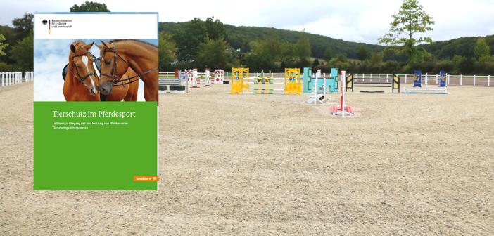 Leitlinien zum Tierschutz im Pferdesport wurden überarbeitet