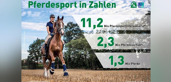 Ipsos-Studie Zahlen Pferdehaltung