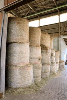 Heulagerung Landwirtschaftsbetriebsversicherung
