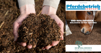 Bio Waldboden biologisch aktive Einstreu