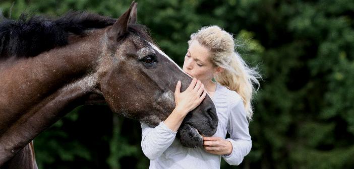 Haltungsansprüche alter Pferde
