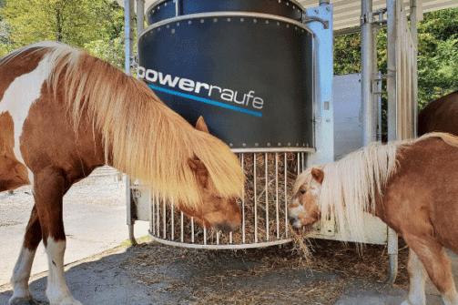 Heuraufe Ponys